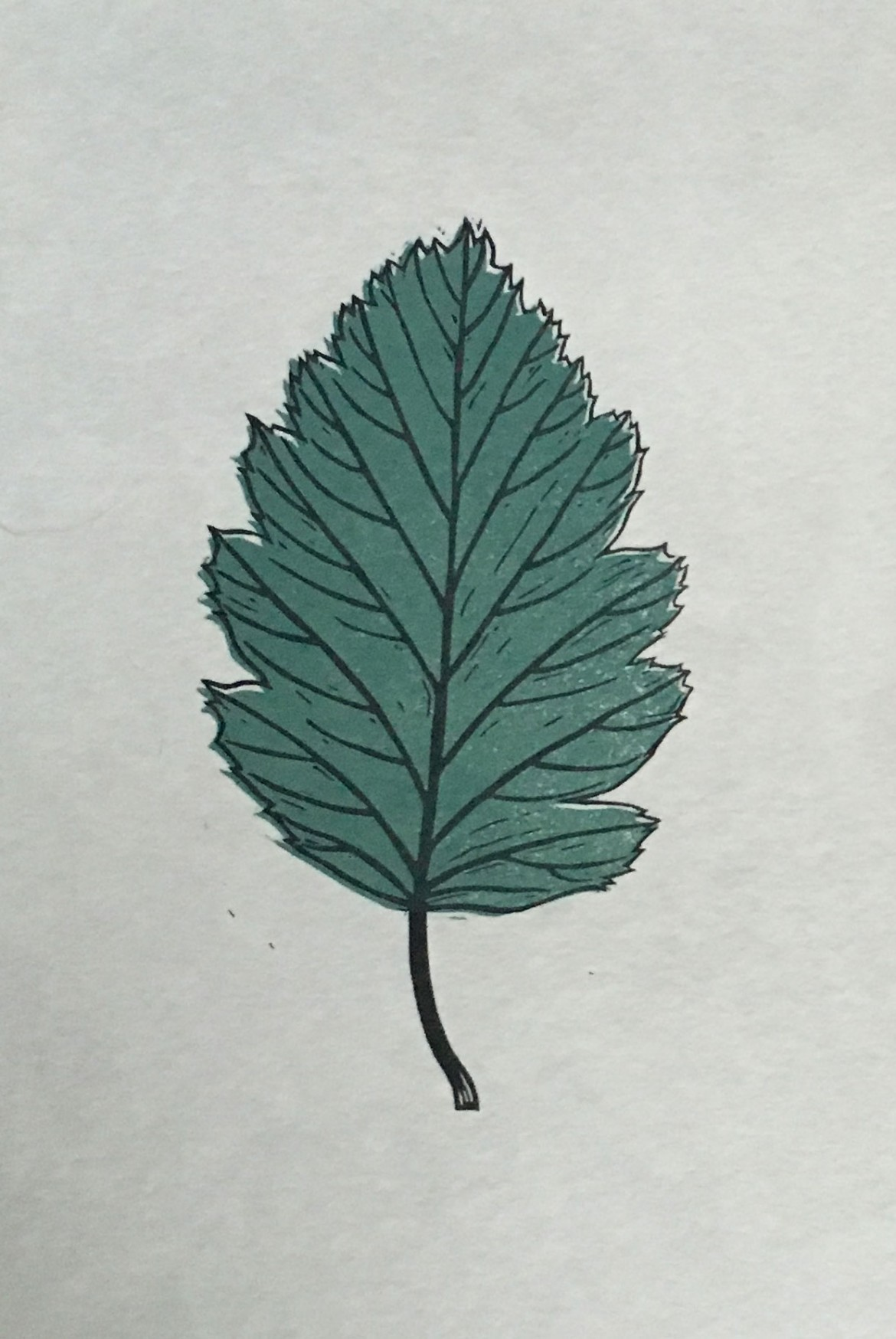 Leaf Lino Print | Draw Cut Ink Press