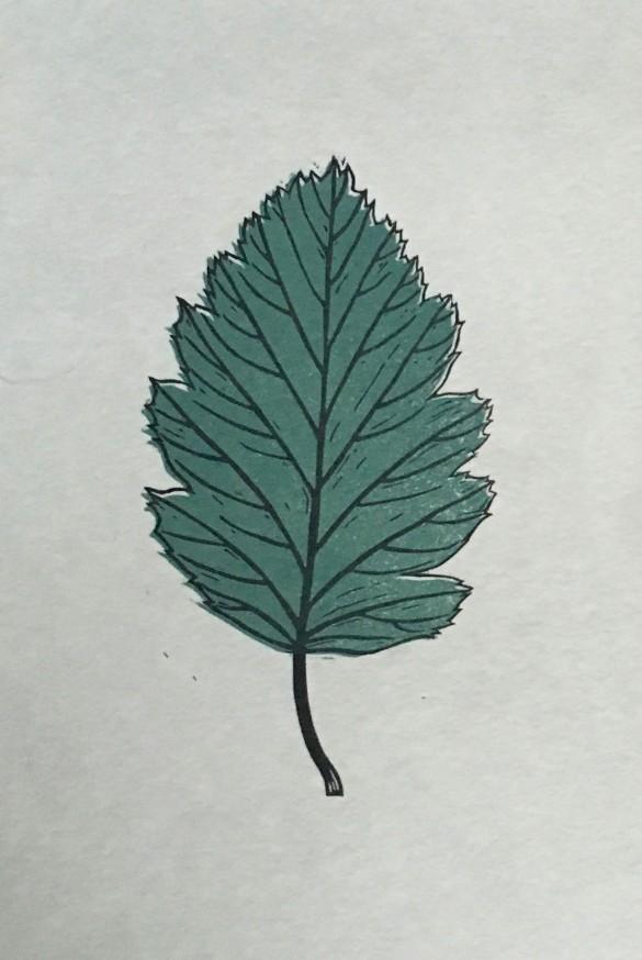 Leaf Lino Print | Draw Cut Ink Press