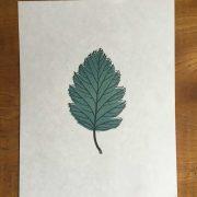 Leaf-Linocut-Print-2Colour