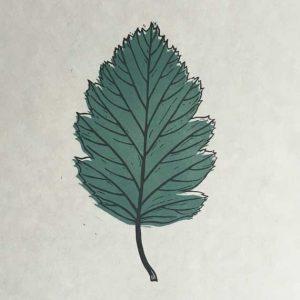 Linocut Print Leaf