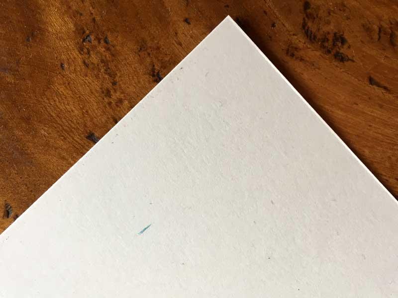 lion-printing-paper-somerset-smooth