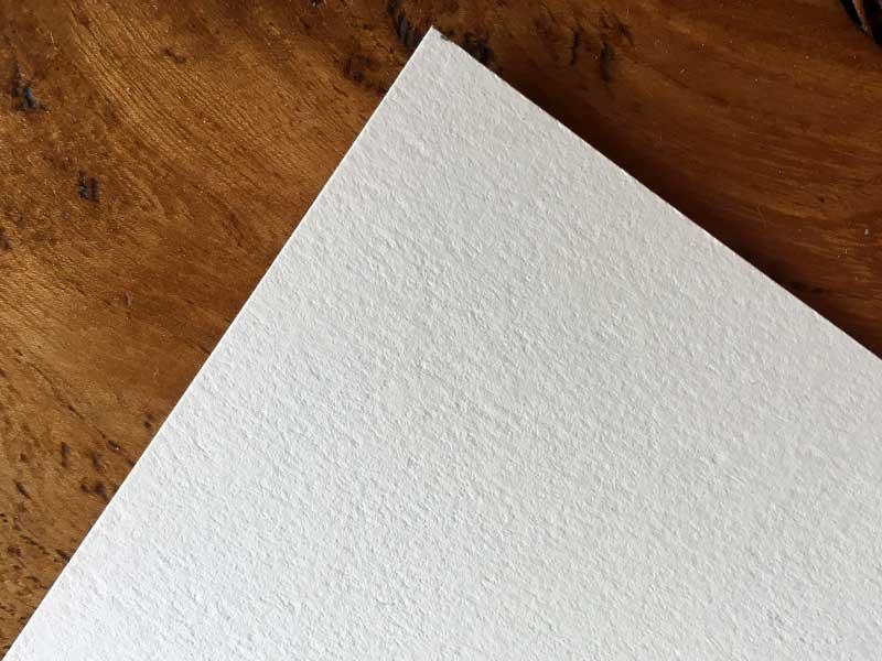 lion-printing-paper-somerset-velvet
