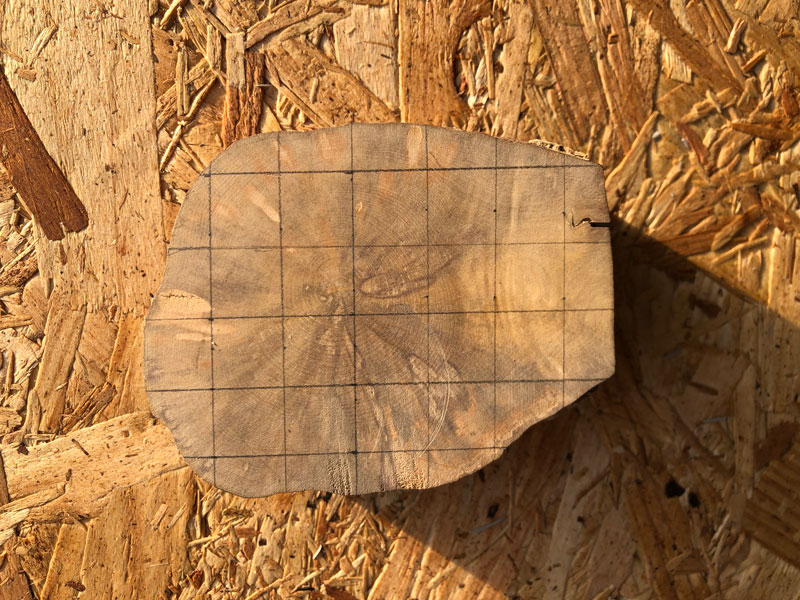 endgrain boxwood top down view